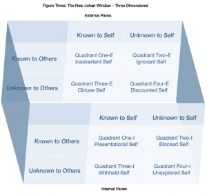 Johari Window - Figure 3