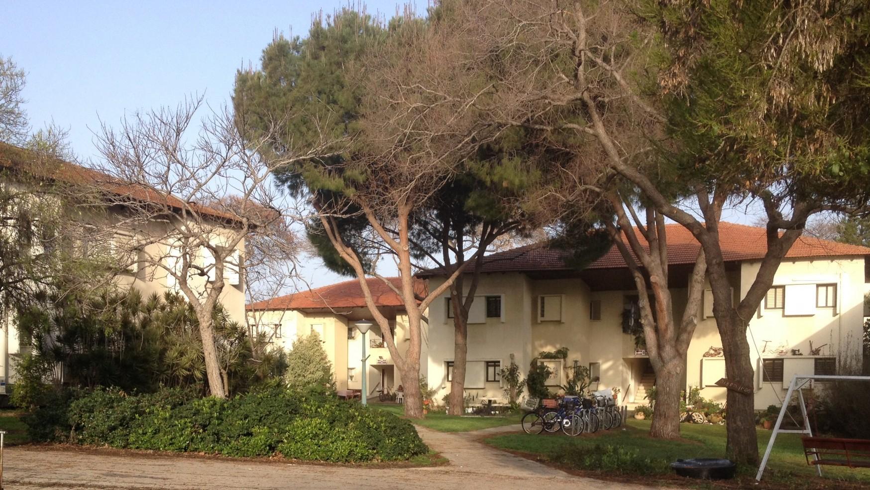 A Few Days on a Kibbutz – part I