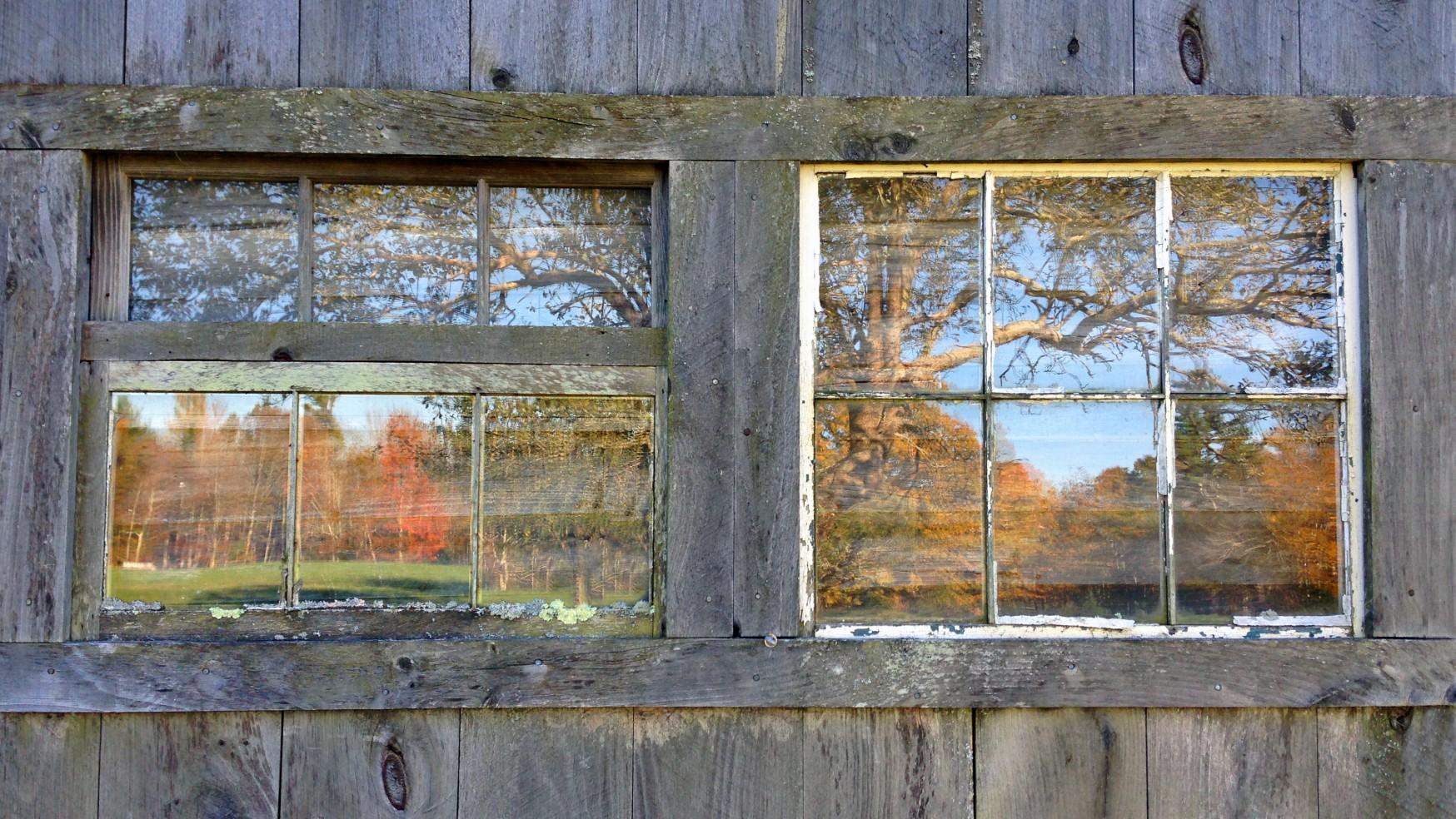 The New Johari Window: #8 Unpredictability