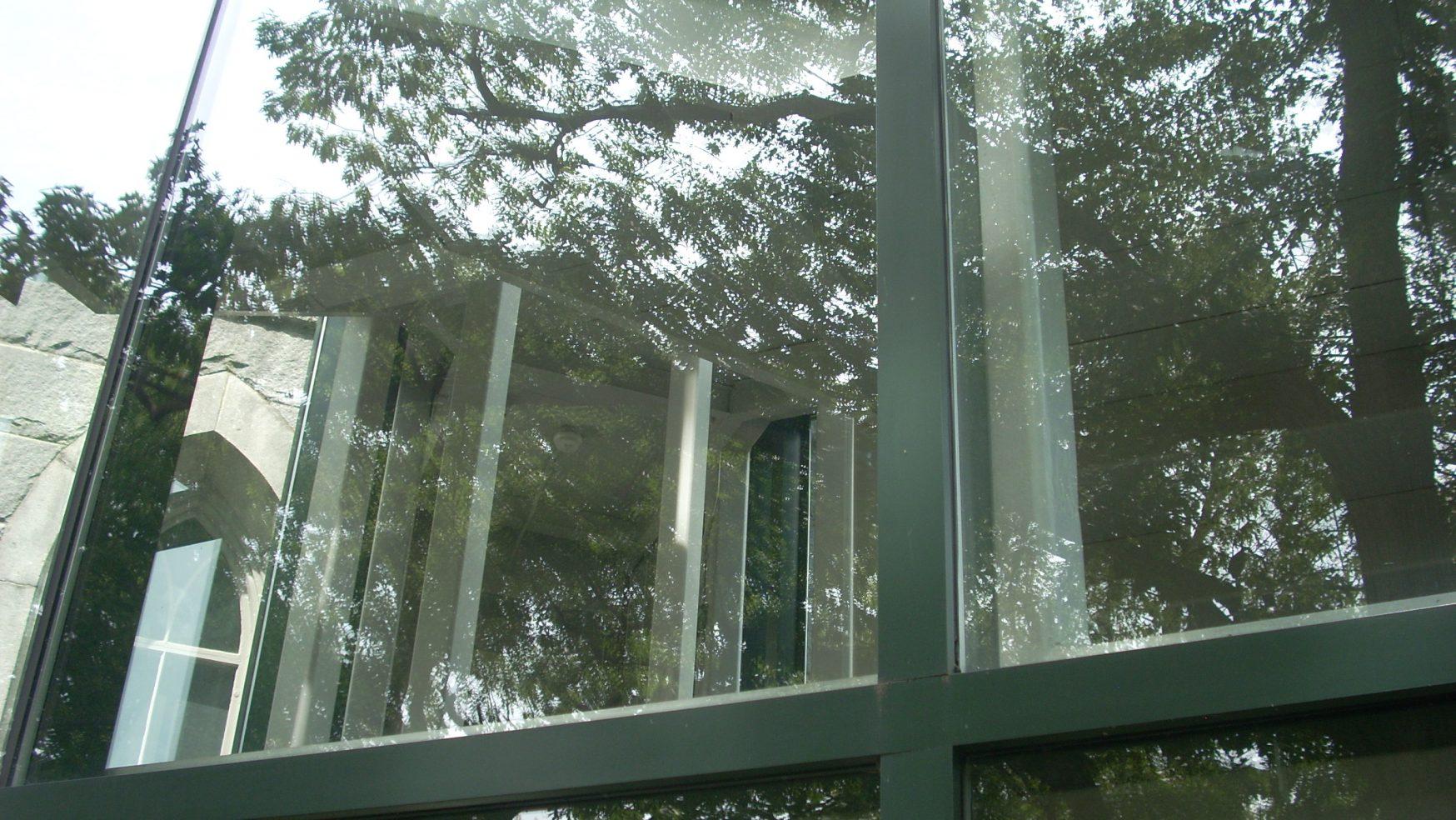 The New Johari Window #19: Quadrant Two: The Blind/Opaque Area