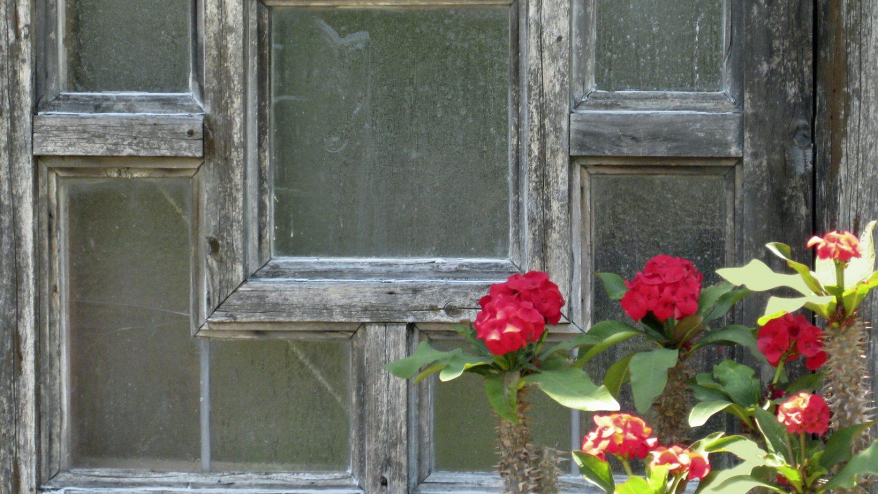 The New Johari Window #28: Quadrant Three: Interpersonal Needs